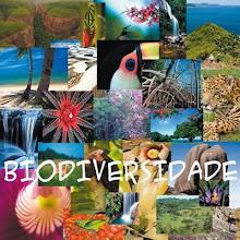 2010 ANO INTERNACIONAL DA BIODIVERSIDADE