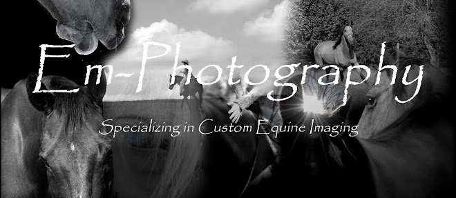 EmPhotography