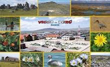 Visite Vicco Perú