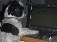 Tanner Blogging