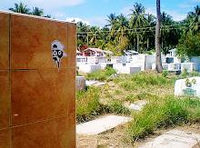 cemetery rott