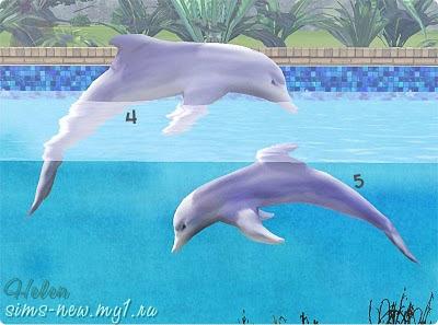 Sims 3 Island Paradise Sharks