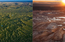 Tar Sands Before and After
