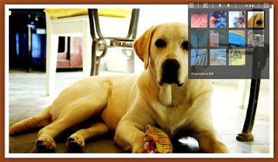 jQuery (mb)Gallery 1.5