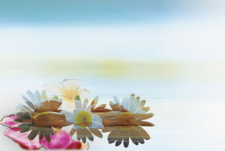 GotPrint spa background for postcards - flowers and woman lying down