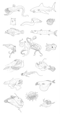 Cricri boyer croquis de poissons - Croquis poisson ...