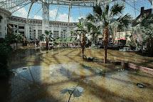 Gaylord Opryland Hotel Flood 2010