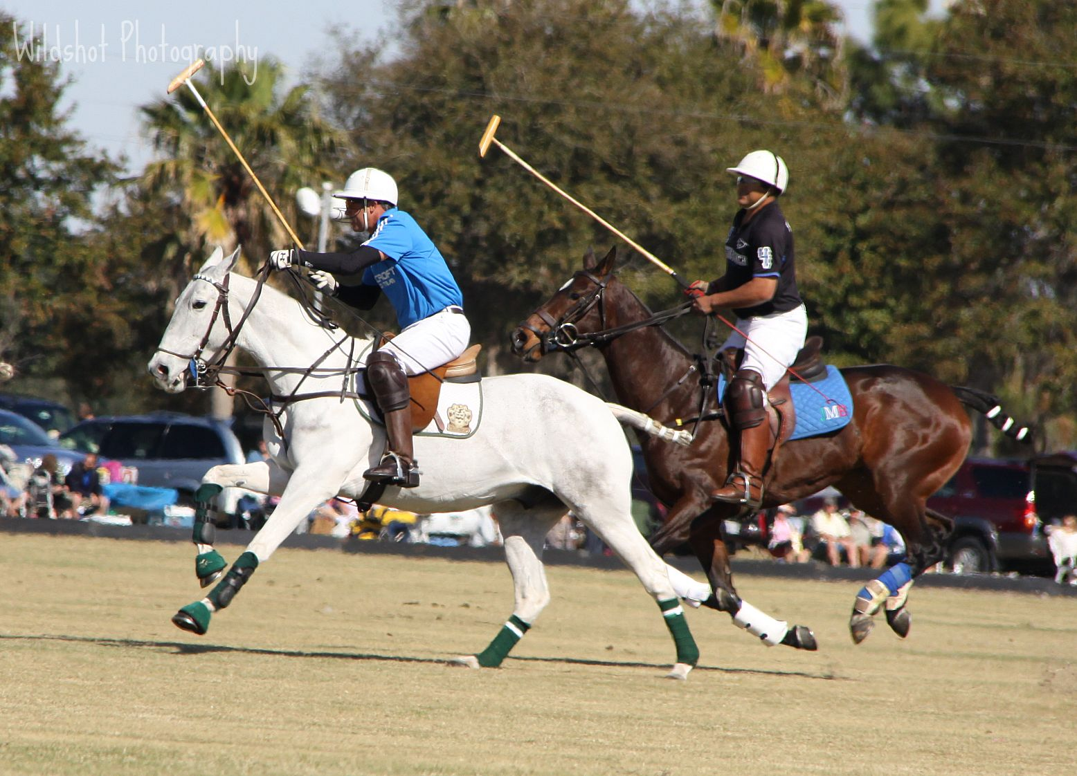 game 1 3 polo match. Black Bedroom Furniture Sets. Home Design Ideas