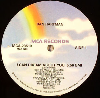 DAN HARTMAN - I CAN DREAM ABOUT YOU [MAXIVINYL]