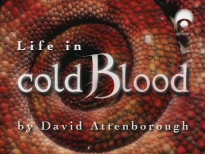 La vida a sangre fria: 4- Serpientes