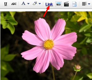 Creating a Picture Link in Blogger Posts - Blogger Tutorials, Tips ...