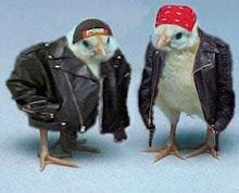 Biker Chicks.