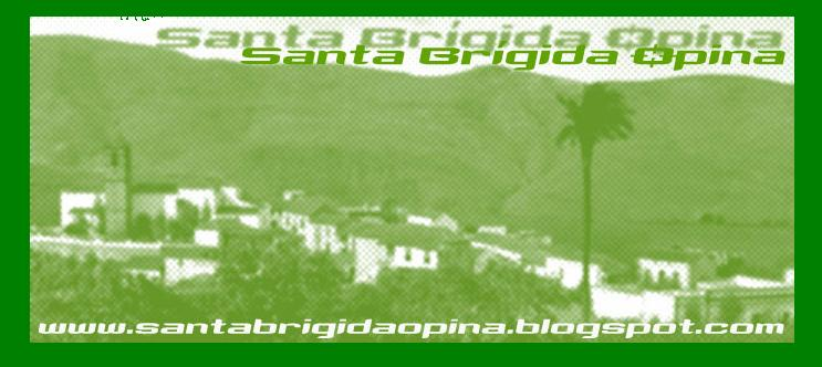 Santa Brígida Opina
