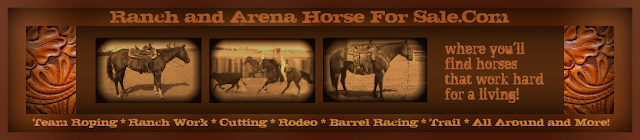 Need to buy or sell a good horse?