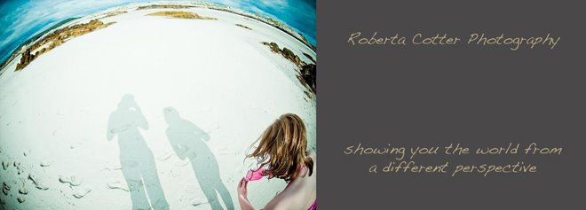 Roberta Cotter Photography