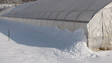 Snow Insulation