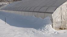 Snow Insulation