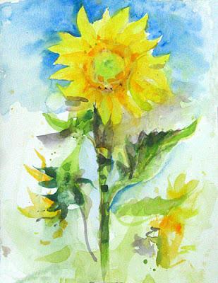 watercolour of a sunflower aspiring