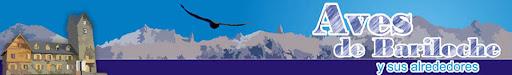 Aves de Bariloche