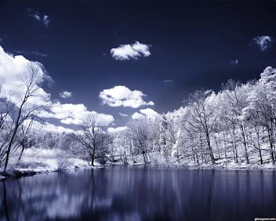 Really Wonderful Four Seasons Wallpaper Seen On  www.coolpicturegallery.net