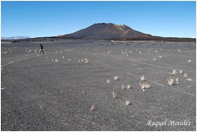 Antofagasta de la Sierra: Para estar mas cerca del cielo 2