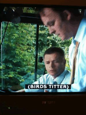 Birds titter