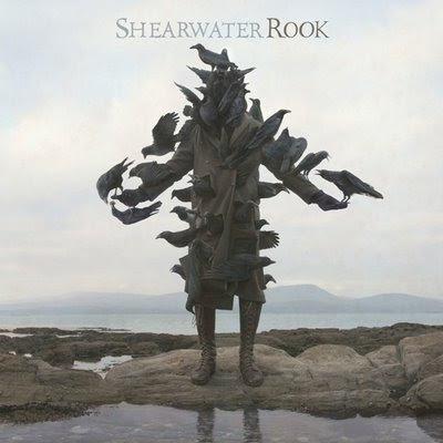 Shearwater – Rook