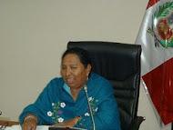 COMISION DE SEGURIDAD SOCIAL APROBÓ PROYECTO DE LEY REFERIDO A LAS PENSIONES SOLIDAR