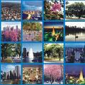 Fotos de la ciudad