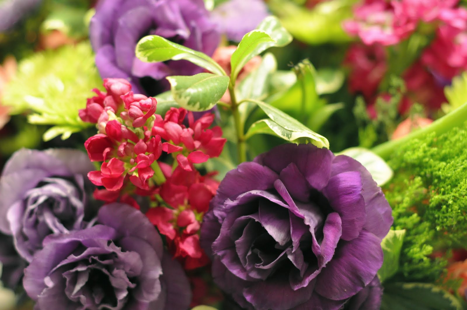 fleur de lis birthday flowers