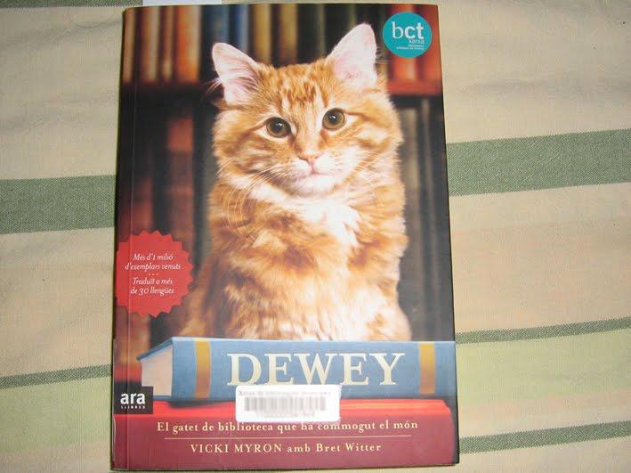Dewey, el gatito de biblioteca que conmovió al mundo (y a mí) Dewey