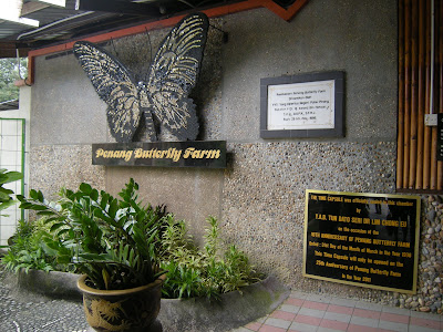 Interesting Facts for and about Butterfly Gardens