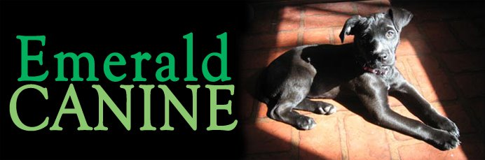 Emerald Canine