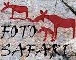 Bli med på FOTOSAFARI!!!