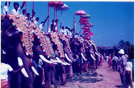 Thrissur Pooram