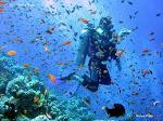 Alatan Scuba diving