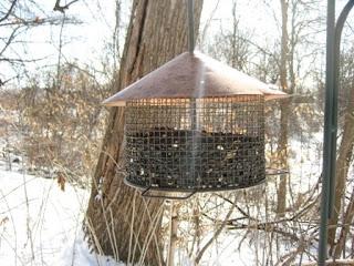 copper topped bird feeder