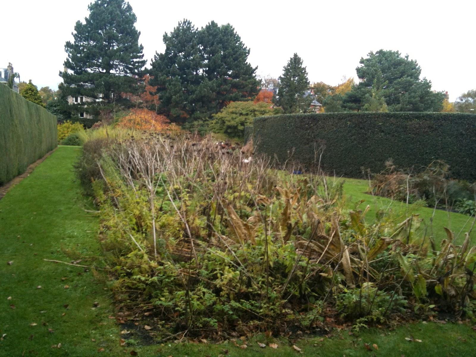herbology 101 garden design