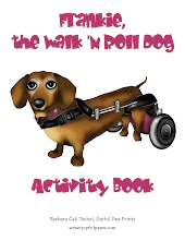 Frankie Activity Book