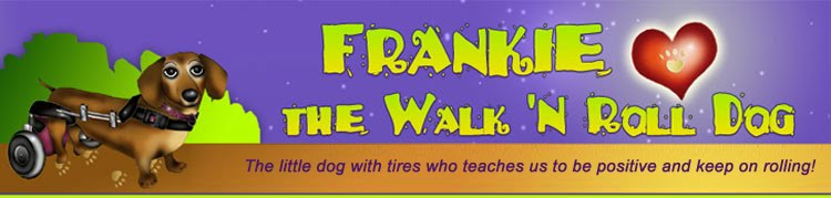 Frankie, the Walk &#39;N Roll Dog