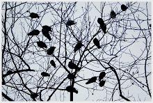 Los pájaros negros de la obsesión