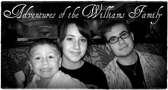 The Adventures of The Williams Family