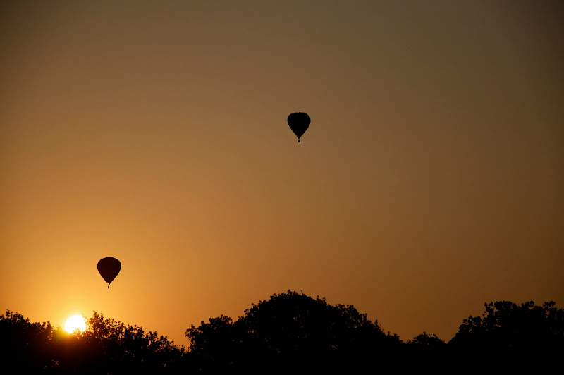 Photo of hot air balloon silhouettes during sunrise