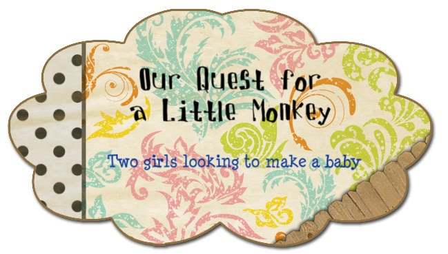 Our Quest for a Little Monkey