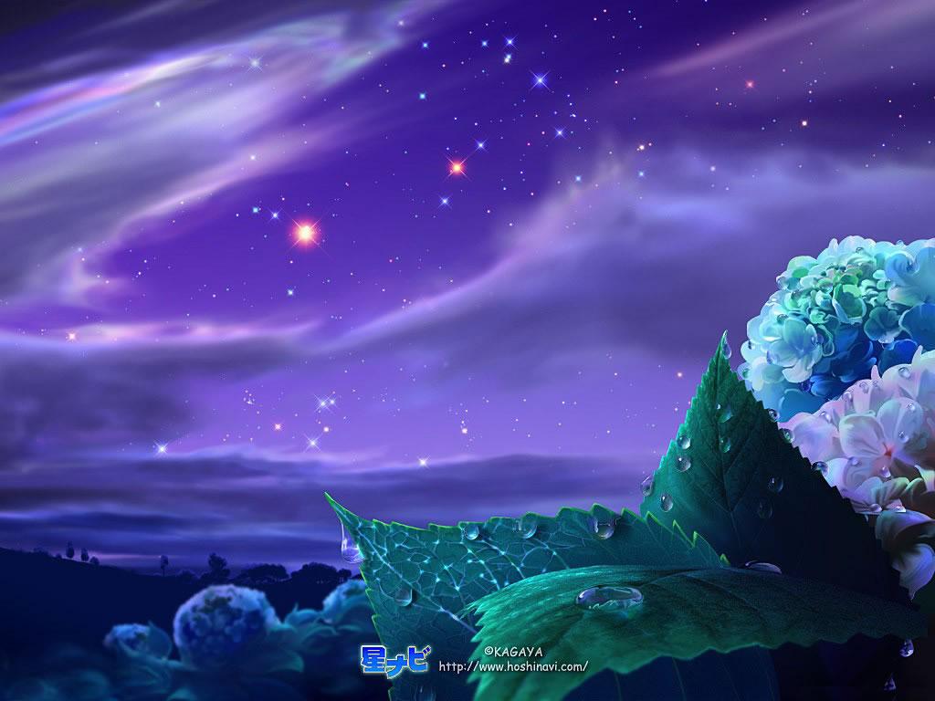 estrellas-cielo-nocturno-964505.jpeg+estrellas]