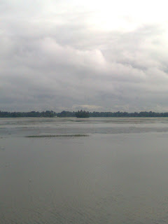 paddy fields filled with rain water in Kuttanadu Alappuzha Kerala which should be cultivated after drying the fileds