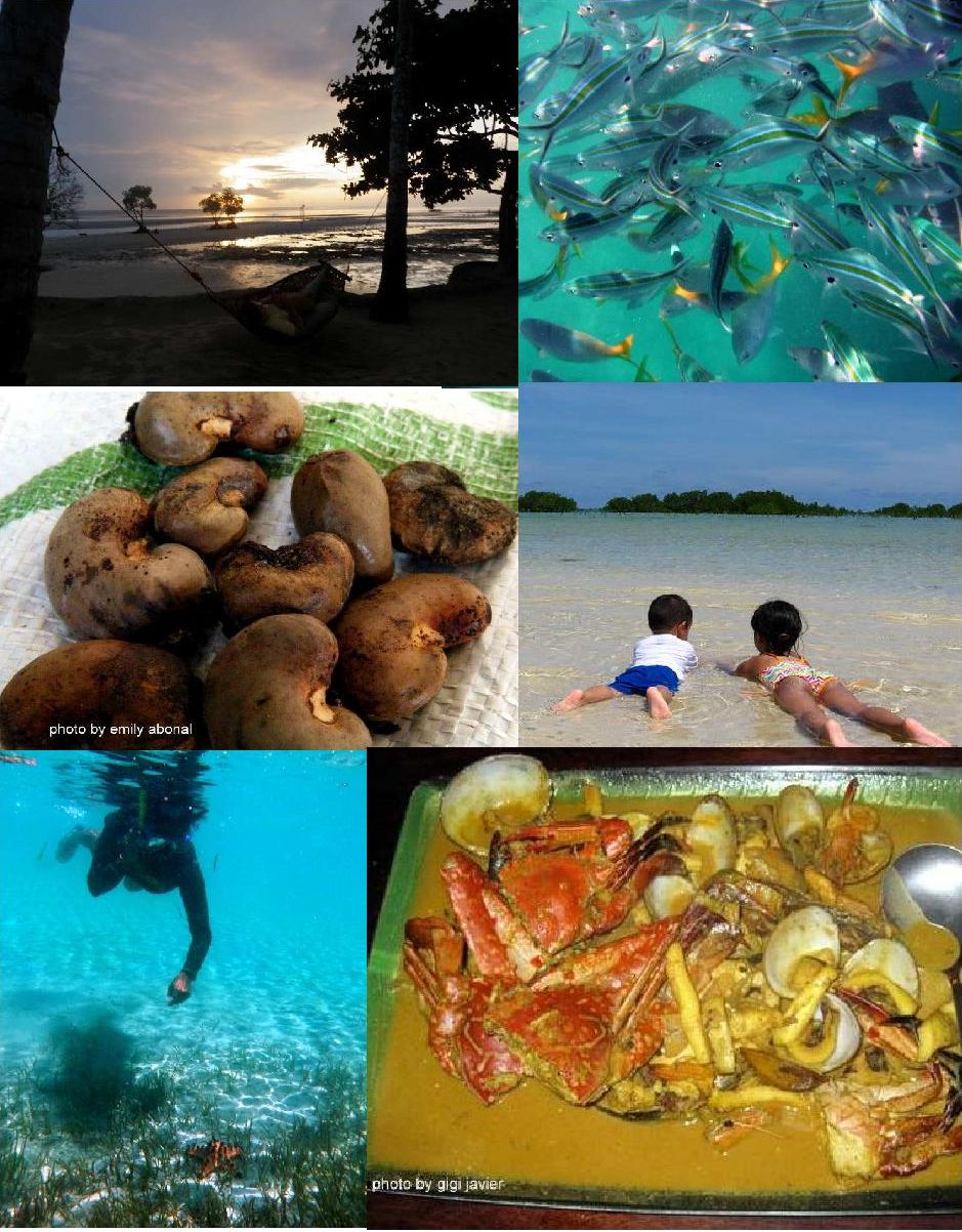 Plan Your Own Palawan Adventure!