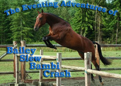 The Eventing Adventures of BaileySlewBambiCrash