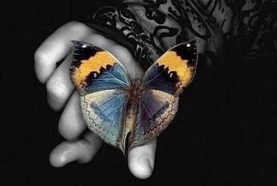 mariposa+mano