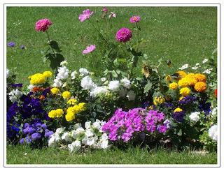 http://2.bp.blogspot.com/_wtCQYU4sYow/Sqh0DNoLpgI/AAAAAAAAE2c/92SmQ-a6aCo/s320/flores-del-jardin%2Bprimavera%2B.jpg